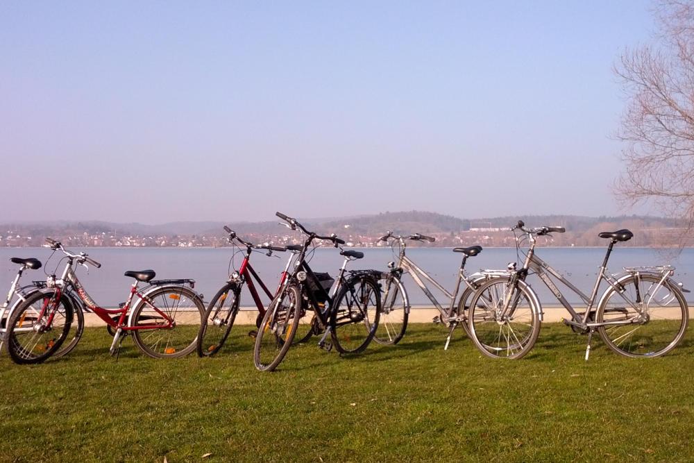 Haus Seegarten Reichenau - Garten - Fahrradverleih
